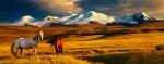 mongolia-2-source-wwwdotnomadicexpeditionsdotcom